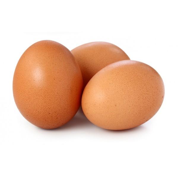 12 Ous  no certificats
