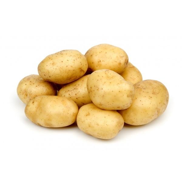 Patata Kennebec kg