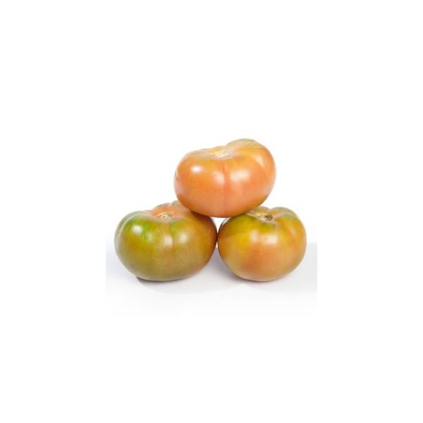 Tomata pera plena ( kg )
