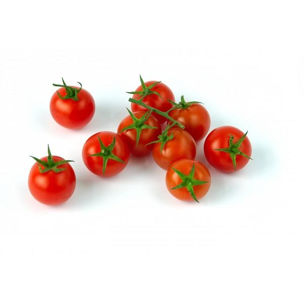 Tomata sucar ( kg )