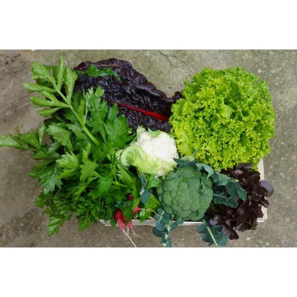 Cistella mitjana verdura