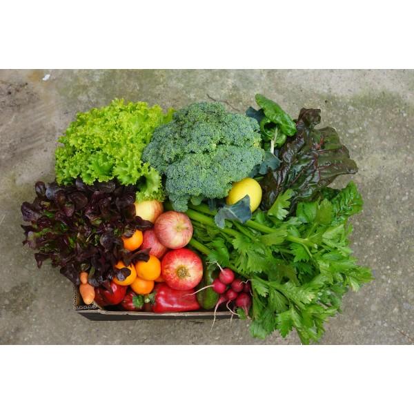 Cistella mitjana verdura i fruita