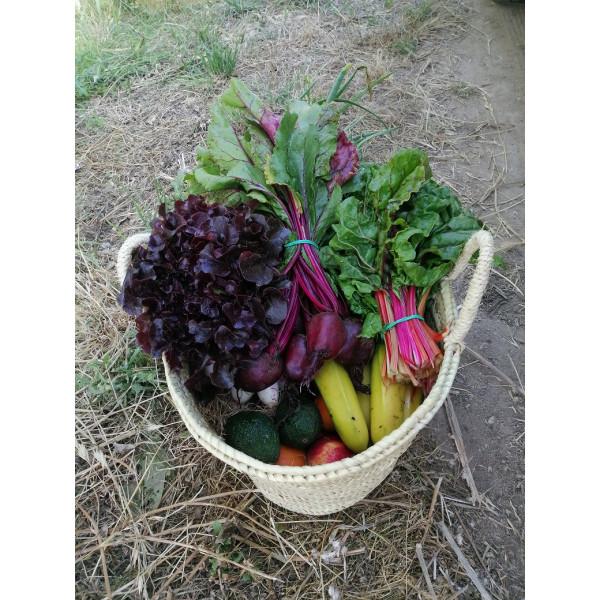 Cabàs natural amb verdura i fruita